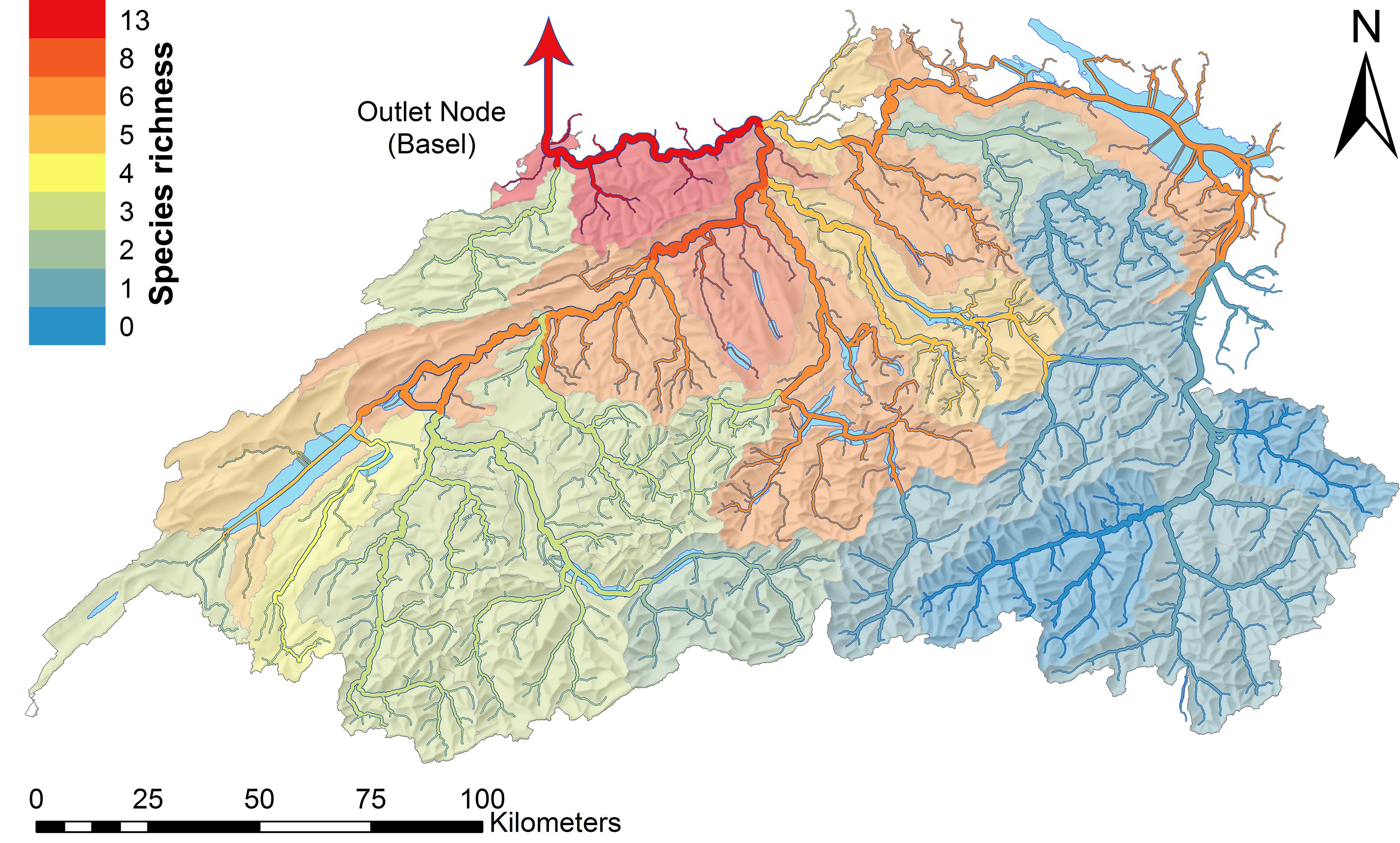 Amphipod Richness Rhine