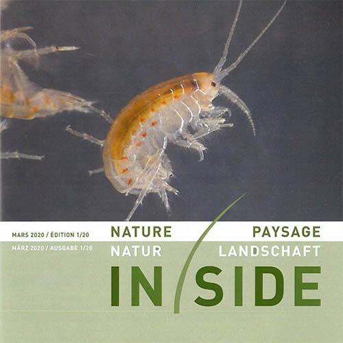 N+L Inside